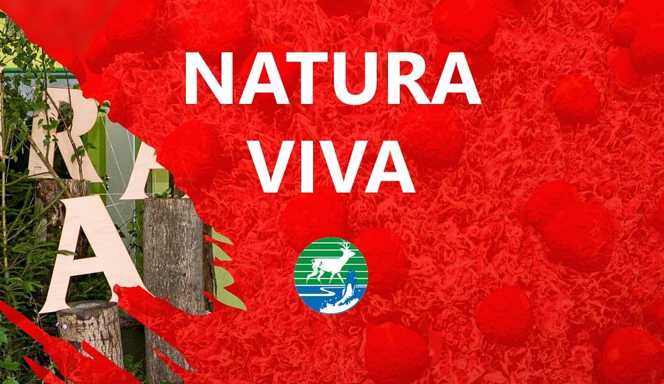 Koronavirus - Natura Viva