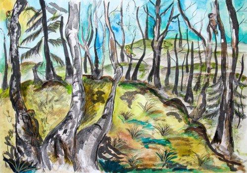 4. Berenika Navrátilová, 15 let - Ptačí les