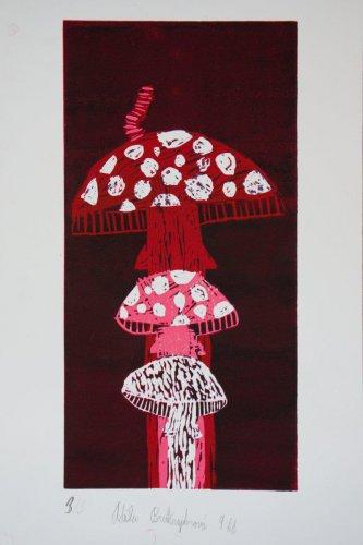 9. Adéla Bredšnajderová - Jak roste houba